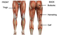Como sacar musculos en las piernas en casa
